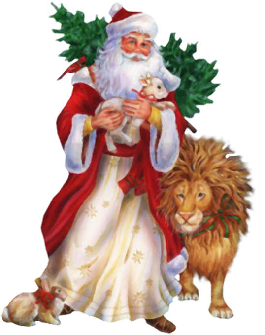 Pap Noel
