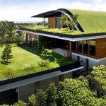 zeleni krov
