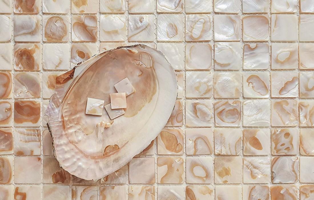 Biscotti Shell & 25mm mosaic