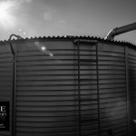 {day 035 project365 2016… sunshine over a barrel}