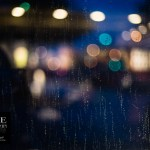 {day 070 project365 2016… rainy day bokeh}