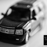 {day 130 project365 2016… escalade}