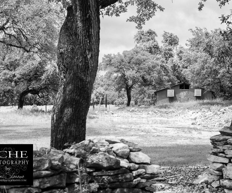 {day 140 project365 2016… hidden barn}