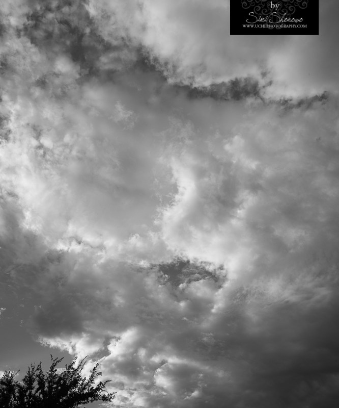 {day 248 project365 2016… sunset clouds}