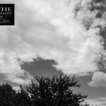 {day 250 mobile365 2016… cotton cloud flow}