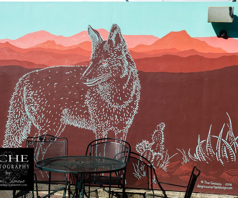 {day 280 project365 2016… wolf art mural}