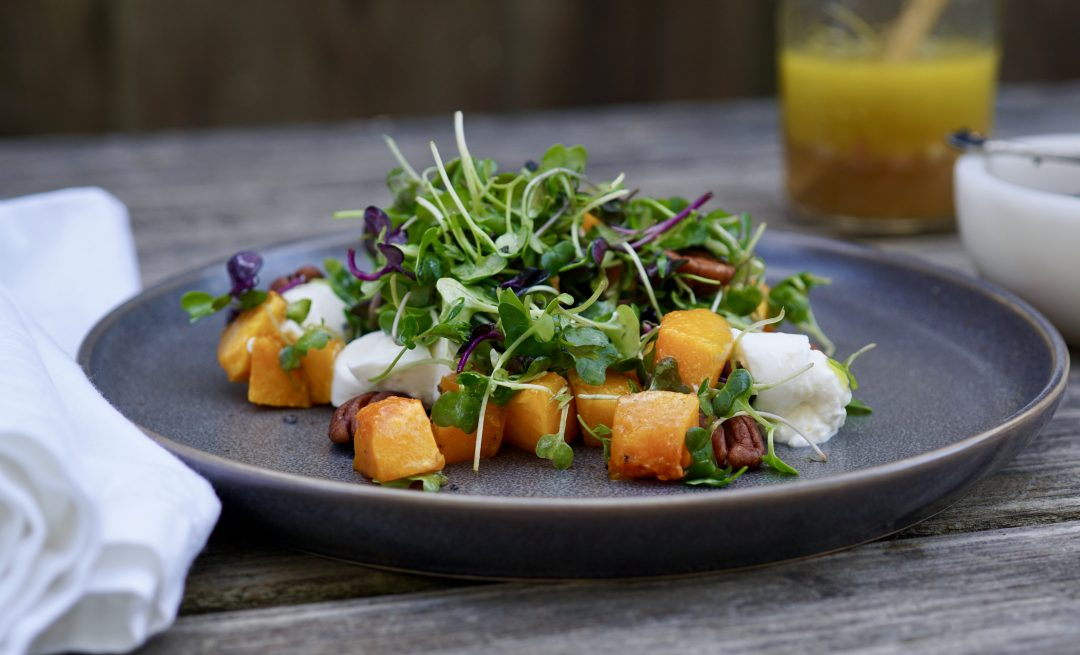Roasted Butternut Squash With Microgreens And Burrata Cheese