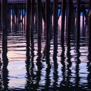 Pillars beneath the pier, summer evening light, on the end of the spit in Homer, Alaska.