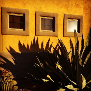 Agave and barrel cactus next to a casita.