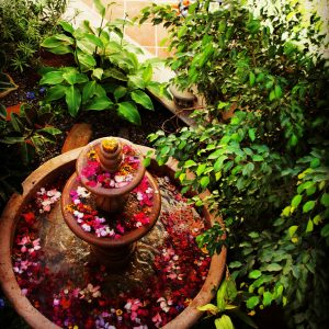 Courtyard fountain with flowers, Loreto Bay, Baja California Norte.