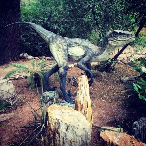 A dinosaur (!) on the grounds of Tucson Botanical Gardens.