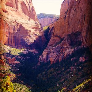 One of the Kolob Canyons at the northern end of Zion National Park.