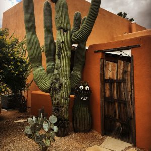 A smiling cactus greets you at one of Civano's unique gates.