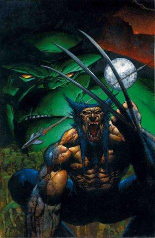 wolverine vs hulk 3