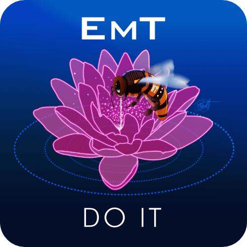 EmT - Do It
