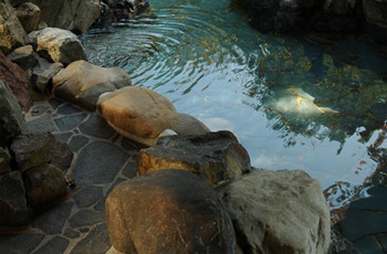 Nishimera Onsen. Image sourced from www.yutato.com