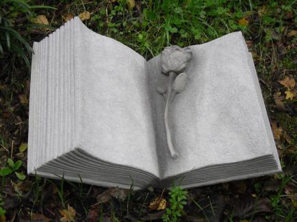 libro aperto con rosa scolpita