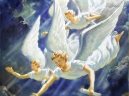 1=angeli