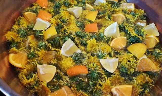 Miel pissenlit fleurs et fruits Vero Ferreira De Matos