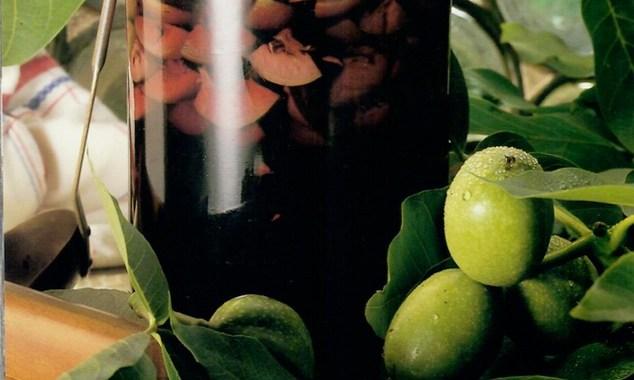 liqueur noix vertes GP Ehrhard