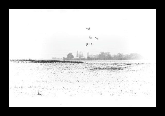 Winter scene kent
