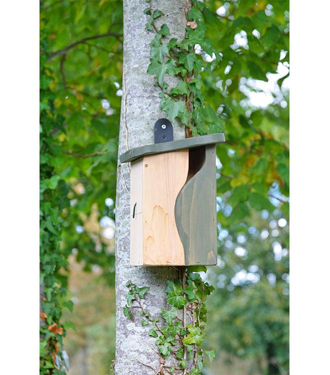Curve Cavity Bird Nest Box Designed by Simon King