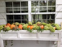 Top Three Outdoor Fall Window Decorations for Your Home