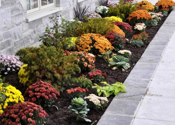 Add fall flowers and plants around your porch.