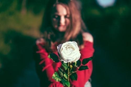 Simpatia da rosa para abrir caminhos no amor