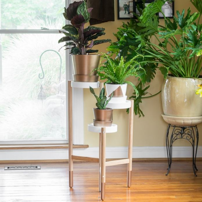 simphome satsuma plant stand