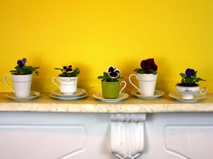 5 Teacup Planters via simphome