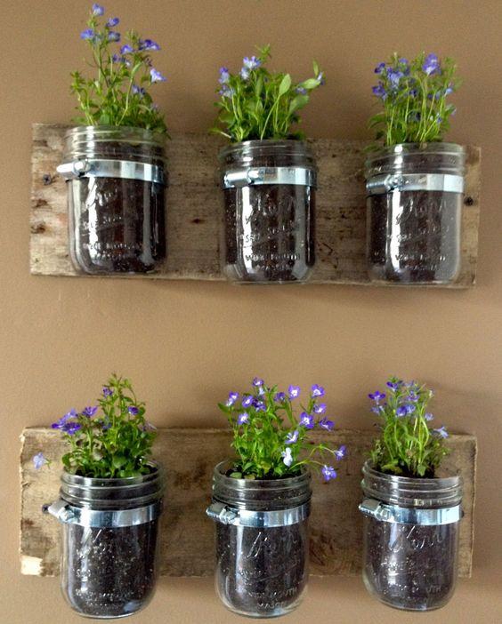 simphome mason jar plant