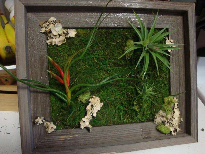 simphome plant wall arts