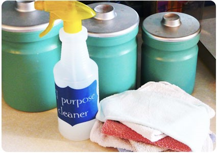 8 DIY Disinfectant Spray All Purpose Cleaner Simphome com