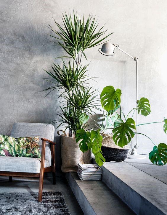 9 Incorporate Living Elements via simphome