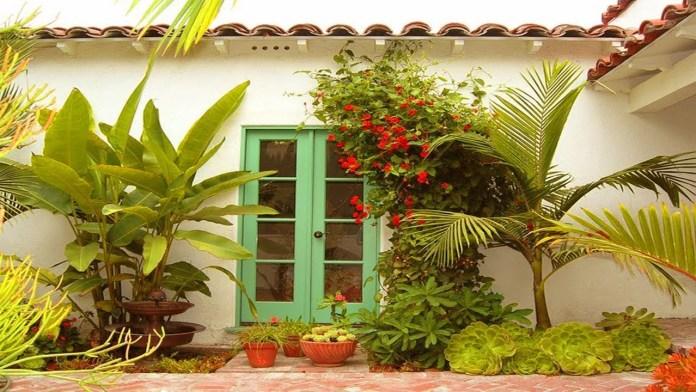 11.SIMPHOME.COM amazing tropical plants for small garden ideas small tropical