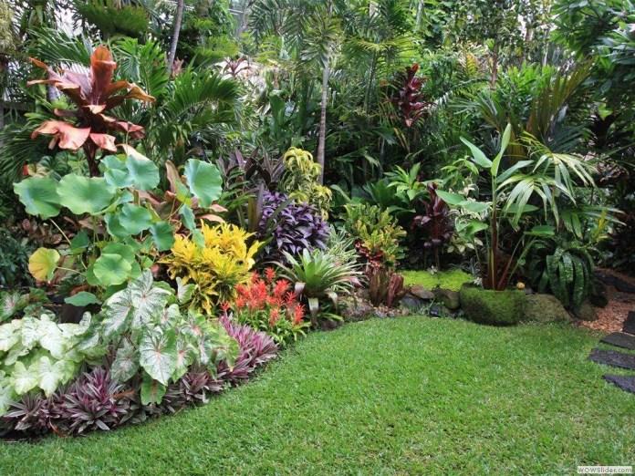 20.SIMPHOME.COM A tropical garden ideas and get ideas to decorate your garden