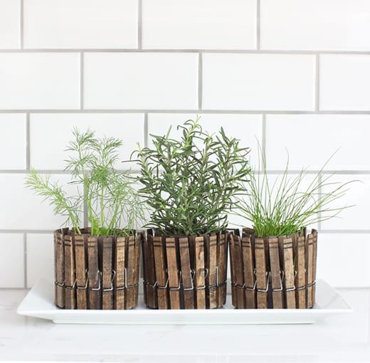 4.Simphome.com Clothespin Herb Planter