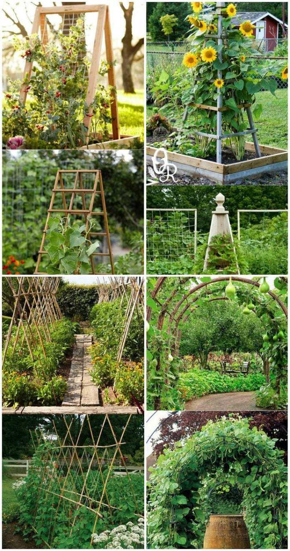 Simphome.com cheap and easy diy trellis vertical garden structures