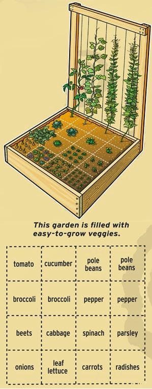 7.Simphome.com Pallet Vegetable Garden Plan