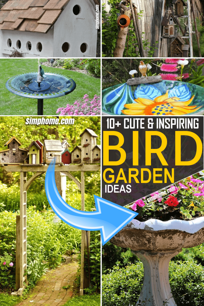 Simphome.com Bird Garden Ideas Featured Pinterest Image
