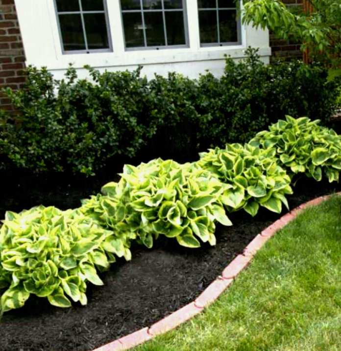 cheap flower garden ideas ujecdent for cheap flower garden ideas