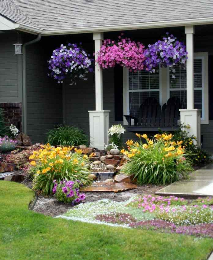 3.Simphome.com Display Your Petunias
