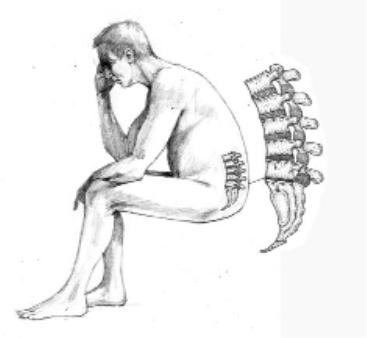 Long distance truck driver back pain  some exercises to help
