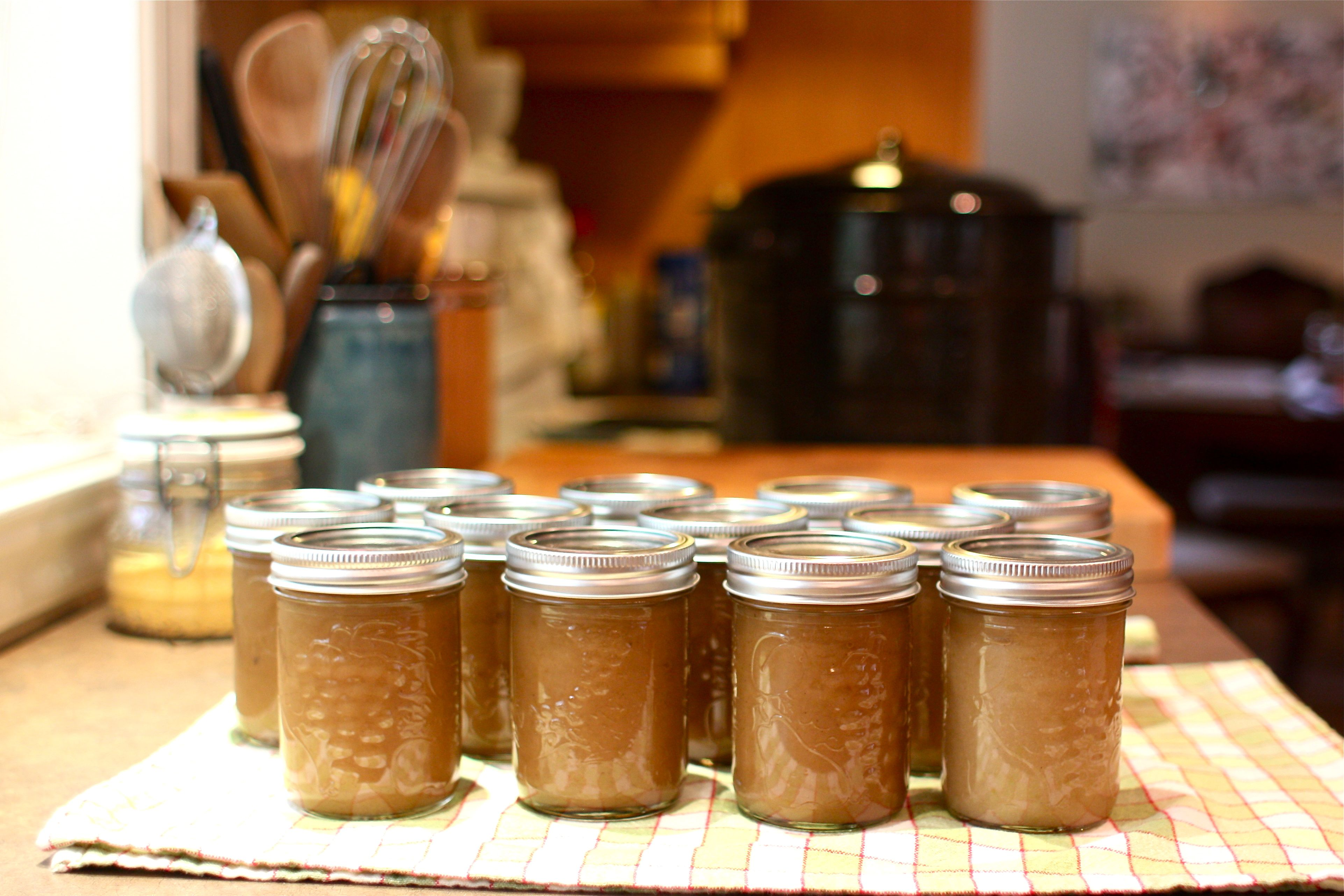 Preserving Autumn Classic Applesauce Recipe