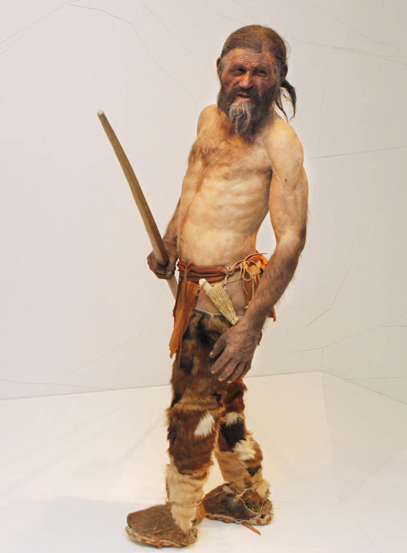 an-artists-impression-of-what-otzi-looked-like-before-he-died