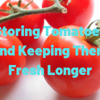Storing Tomatoes and Keeping Them Fresh Longer