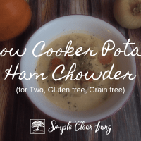 Slow Cooker Potato Ham Chowder (Recipes for Two)