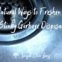 Natural Ways to Freshen a Stinky Kitchen Garbage Disposal