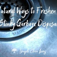 Natural Ways to Freshen a Stinky Kitchen Garbage Disposal